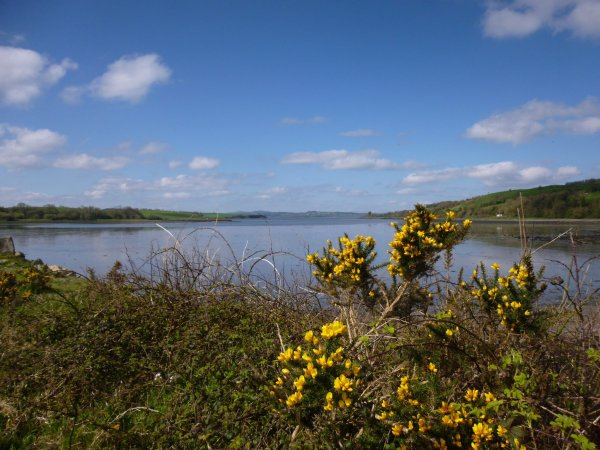 Lough Swilly - Inishowen, Irlande