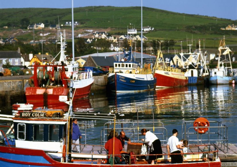 Le petit port de Dingle, Kerry, Irlande